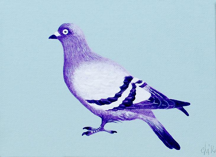 pigeon_blog_image_1