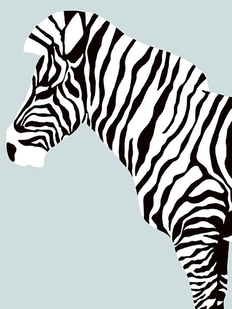 zebra_bottom_left_blog