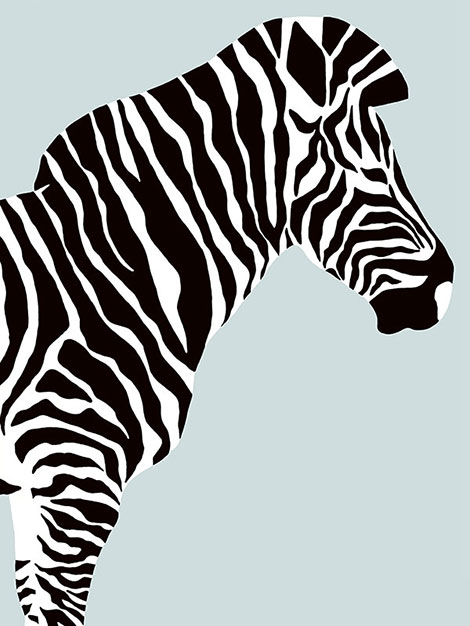 zebra_bottom_right_blog