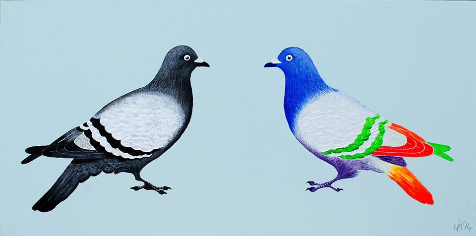 tropical_pigeon_pair